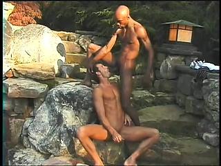 silikon sex jente sørafrikanske svarte homofile