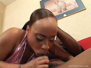 ebony chick gets into a lovely bareback fuck fest with a stud